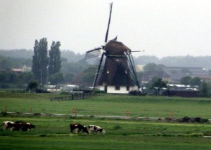 No trem, em Rotterdam, vendo a chuva cair