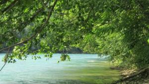 Rio Aare em Berna